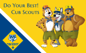 Cubscout2